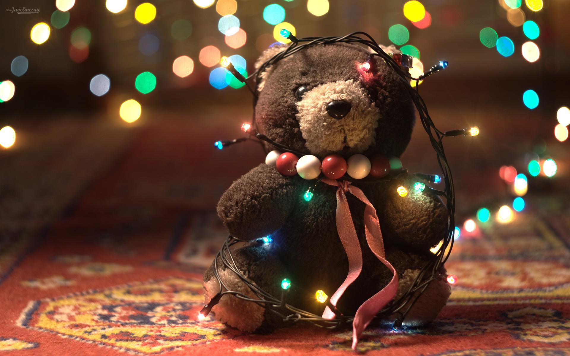 wallpaper adorable teddy bear adorable, bear, cute, teddy