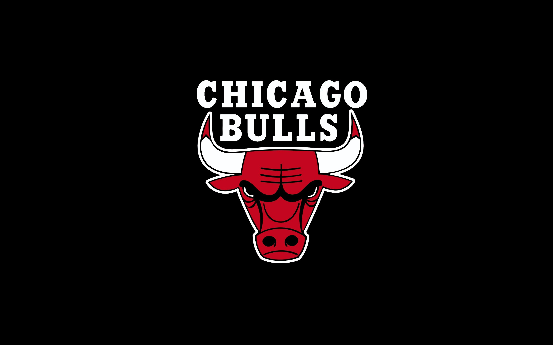 Wallpaper Chicago Bulls Rodriguez