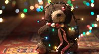 Adorable Teddy Bear7666515777 200x110 - Adorable Teddy Bear - Teddy, Cute, Bear, Adorable