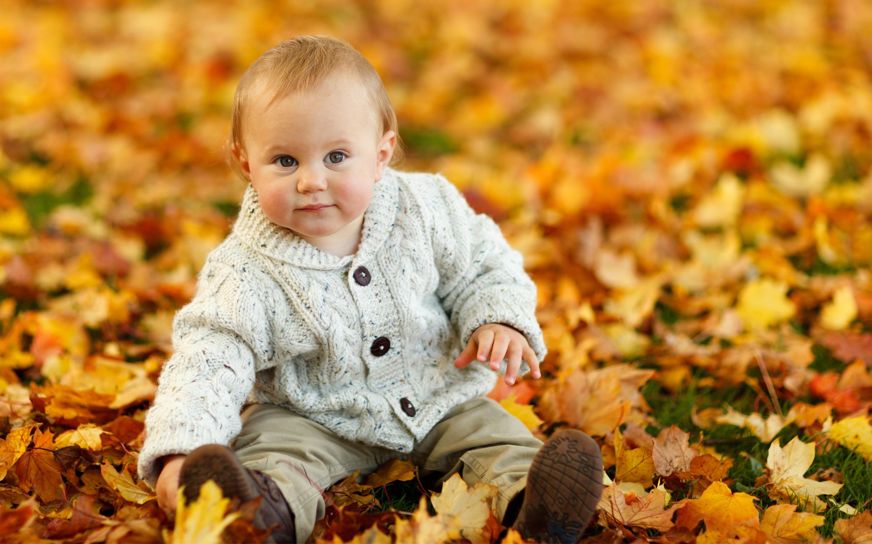 wallpaper 4k cute baby boy autumn leaves autumn, baby, cute, flowers