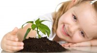 Cute Baby Girl Plant547932911 200x110 - Cute Baby Girl Plant - Play, Plant, Girl, Cute, Baby