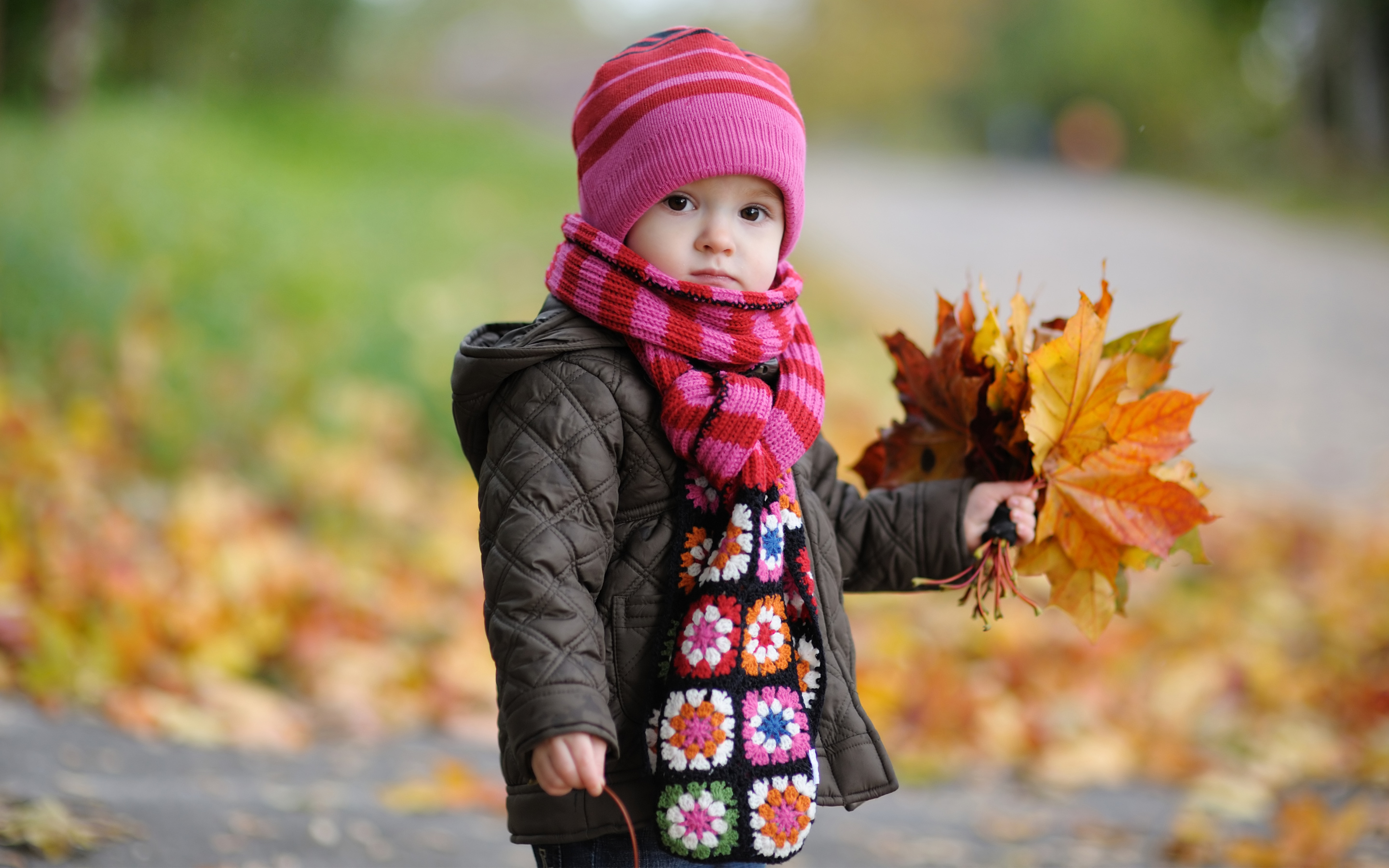 Cute Baby in Autumn1165110955 - Cute Baby in Autumn - Sleeping, Leaves, Cute, Baby, Autumn