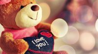 I Love You Teddy Bear7210613699 200x110 - I Love You Teddy Bear - Teddy, Season, Love, Bear