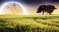 Planet Farm Trees Landscape249463634 200x110 - Planet Farm Trees Landscape - Trees, Planet, Landscape, Farm, Aberto
