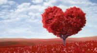 Red Love Heart Tree764739230 200x110 - Red Love Heart Tree - tree, Tomorrow, Love, Heart