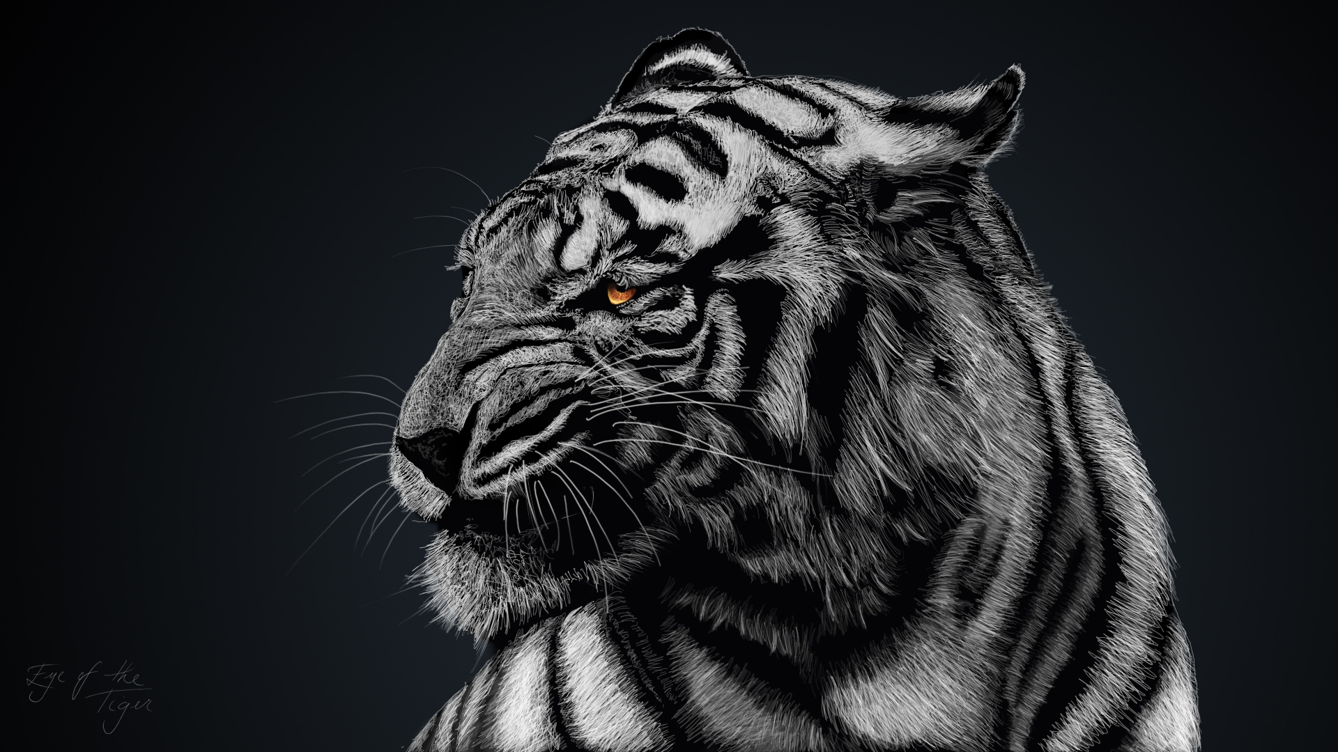 Tiger Artwork HD693636362 - Tiger Artwork HD - Tiger, Leopard, Artwork