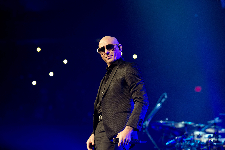 Pitbull 1 - Pitbull - Pitbull, Music