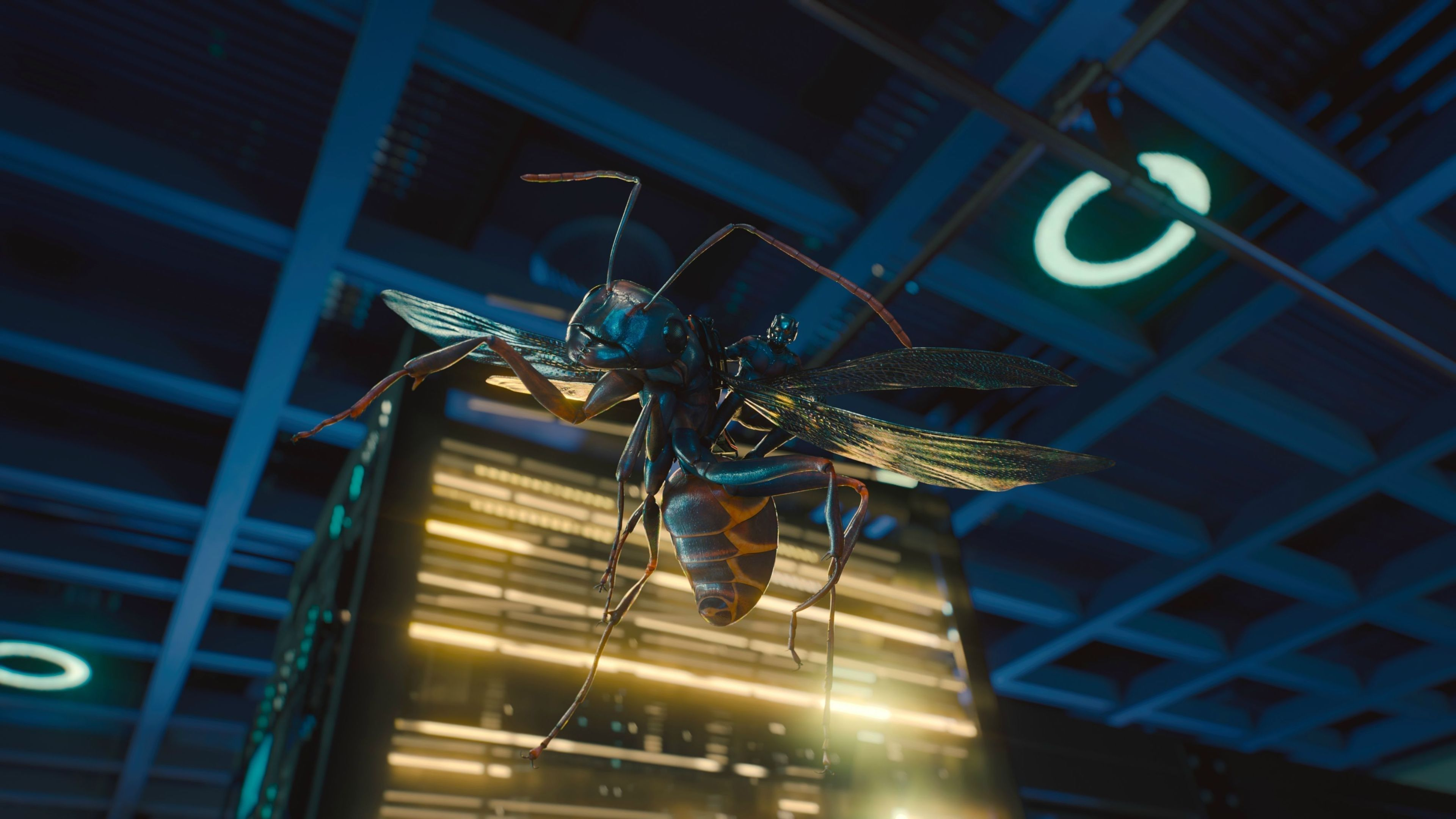 2018 ant man and the wasp movie 4k 1537645182 - 2018 Ant Man And The Wasp Movie 4K - movies wallpapers, hd-wallpapers, ant man wallpapers, ant man and the wasp wallpapers, 4k-wallpapers, 2018-movies-wallpapers