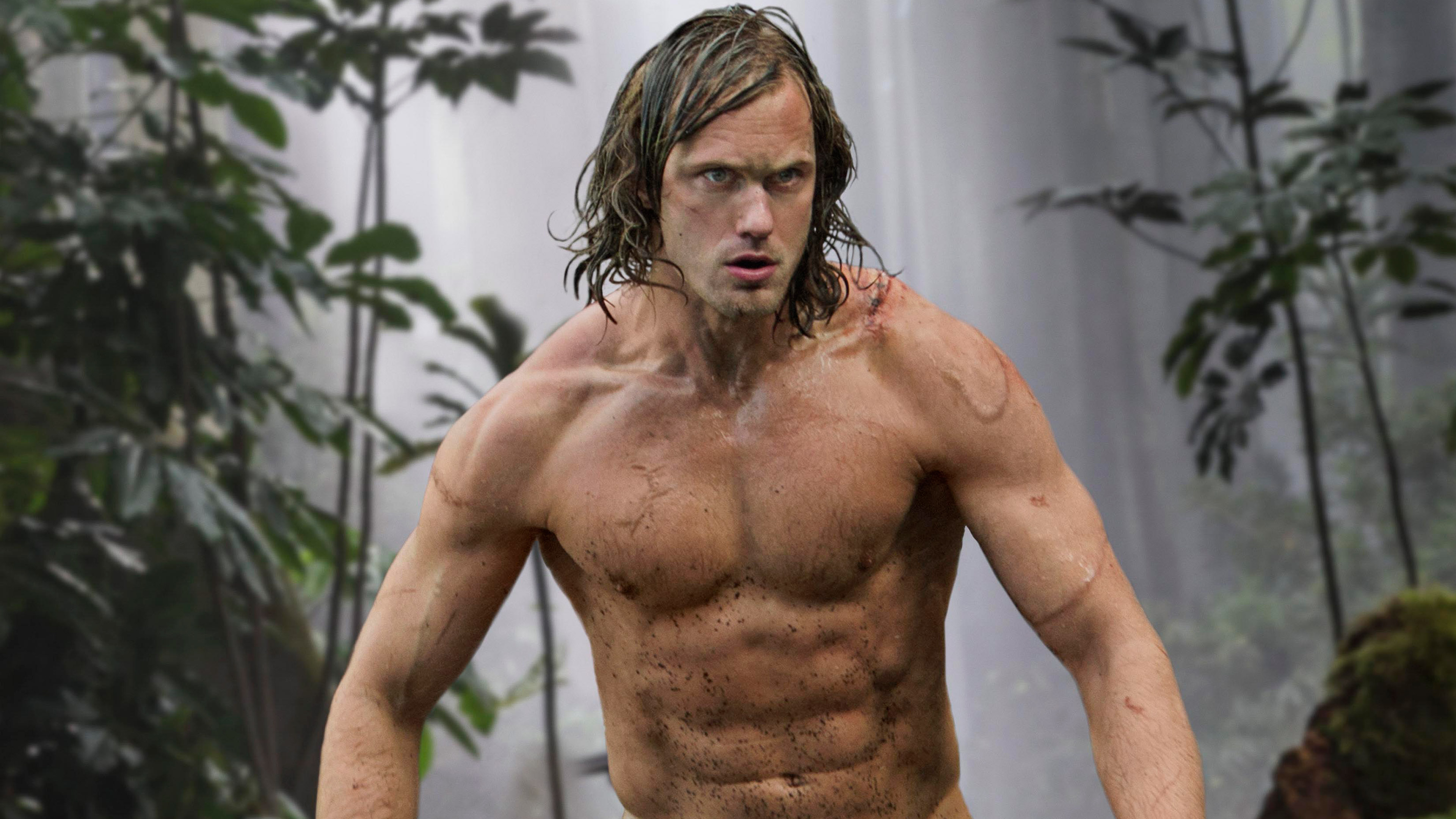 alexander skarsgard the legend of tarzan 1536364156 - Alexander Skarsgard The Legend Of Tarzan - the legend of tarzan wallpapers, tarzan wallpapers, movies wallpapers, 2016 movies wallpapers