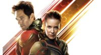 ant man and the wasp movie 12k 1537645229 200x110 - Ant Man And The Wasp Movie 12k - movies wallpapers, hd-wallpapers, ant man wallpapers, ant man and the wasp wallpapers, 8k wallpapers, 5k wallpapers, 4k-wallpapers, 2018-movies-wallpapers, 12k wallpapers, 10k wallpapers