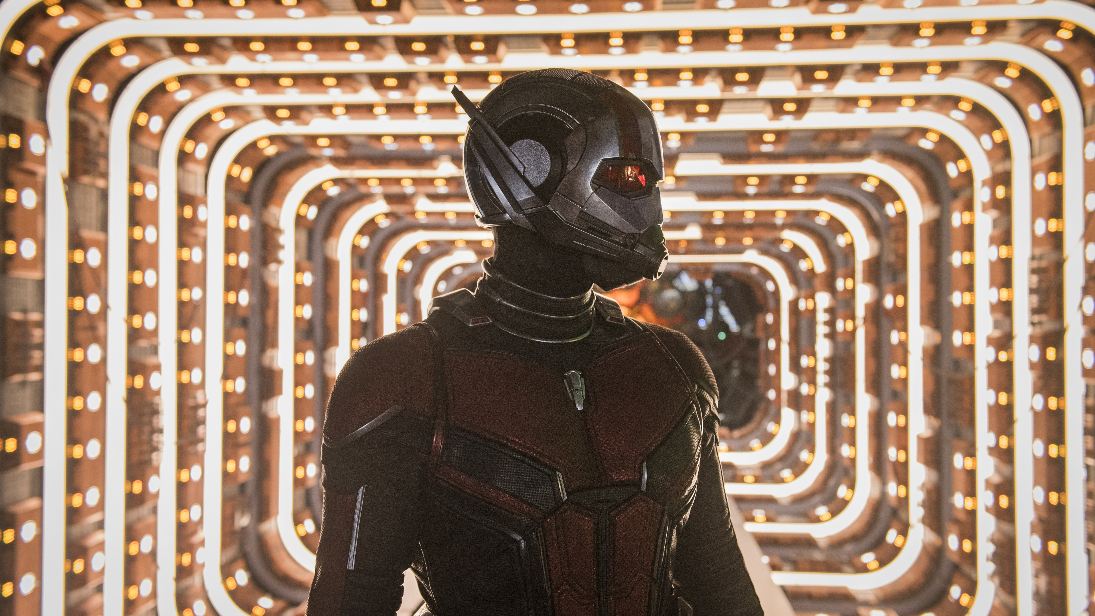 ant man and the wasp movie 5k 1537645092 - Ant Man And The Wasp Movie 5k - movies wallpapers, hd-wallpapers, ant man wallpapers, ant man and the wasp wallpapers, 5k wallpapers, 4k-wallpapers, 2018-movies-wallpapers