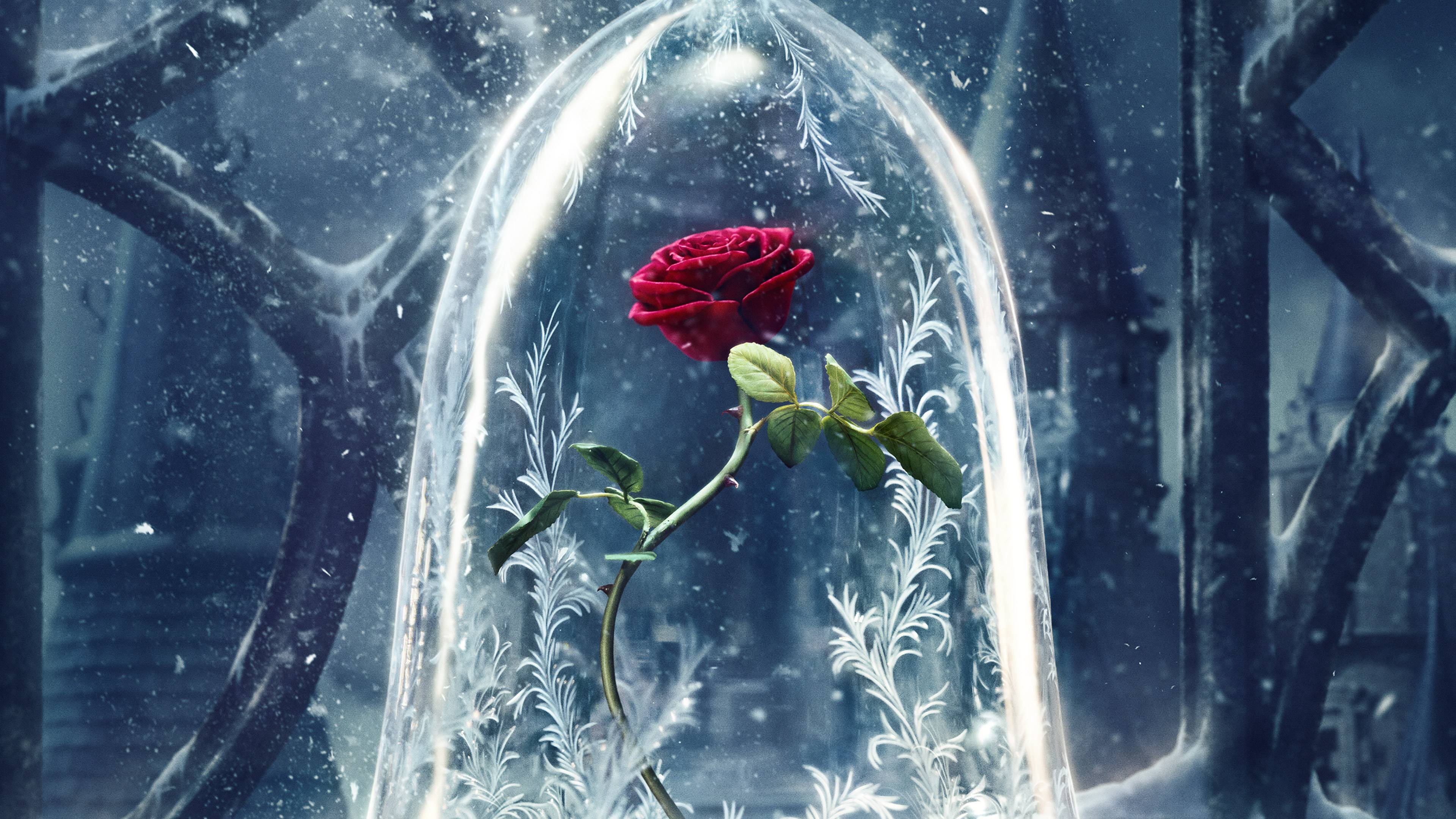 beauty and the beast original 4k 1536364239 - Beauty And The Beast Original 4k - rose wallpapers, beauty and the beast wallpapers, 4k-wallpapers, 2017 movies wallpapers