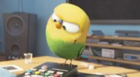 bird secrete life of pets 1536362046 200x110 - Bird Secrete Life Of Pets - the secret life of pets wallpapers, movies wallpapers, cartoons wallpapers, animated movies wallpapers, 2016 movies wallpapers