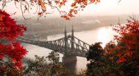 bridge autumn city citadella budapest hungary 4k 1538068184 200x110 - bridge, autumn, city, citadella, budapest, hungary 4k - City, bridge, Autumn