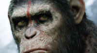 dawn of the planet of the apes hd 1536361937 200x110 - Dawn of the Planet of the Apes HD - movies wallpapers, monkey wallpapers