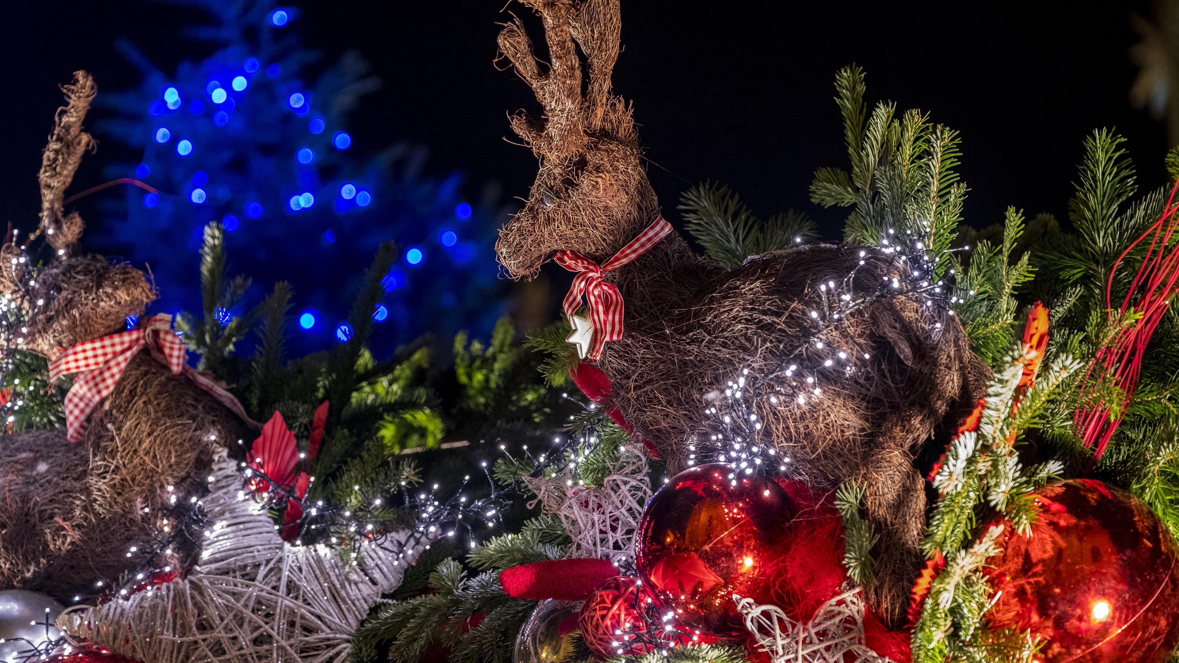 deer christmas toys balls christmas new year 4k 1538344858 - deer, christmas toys, balls, christmas, new year 4k - Deer, christmas toys, Balls