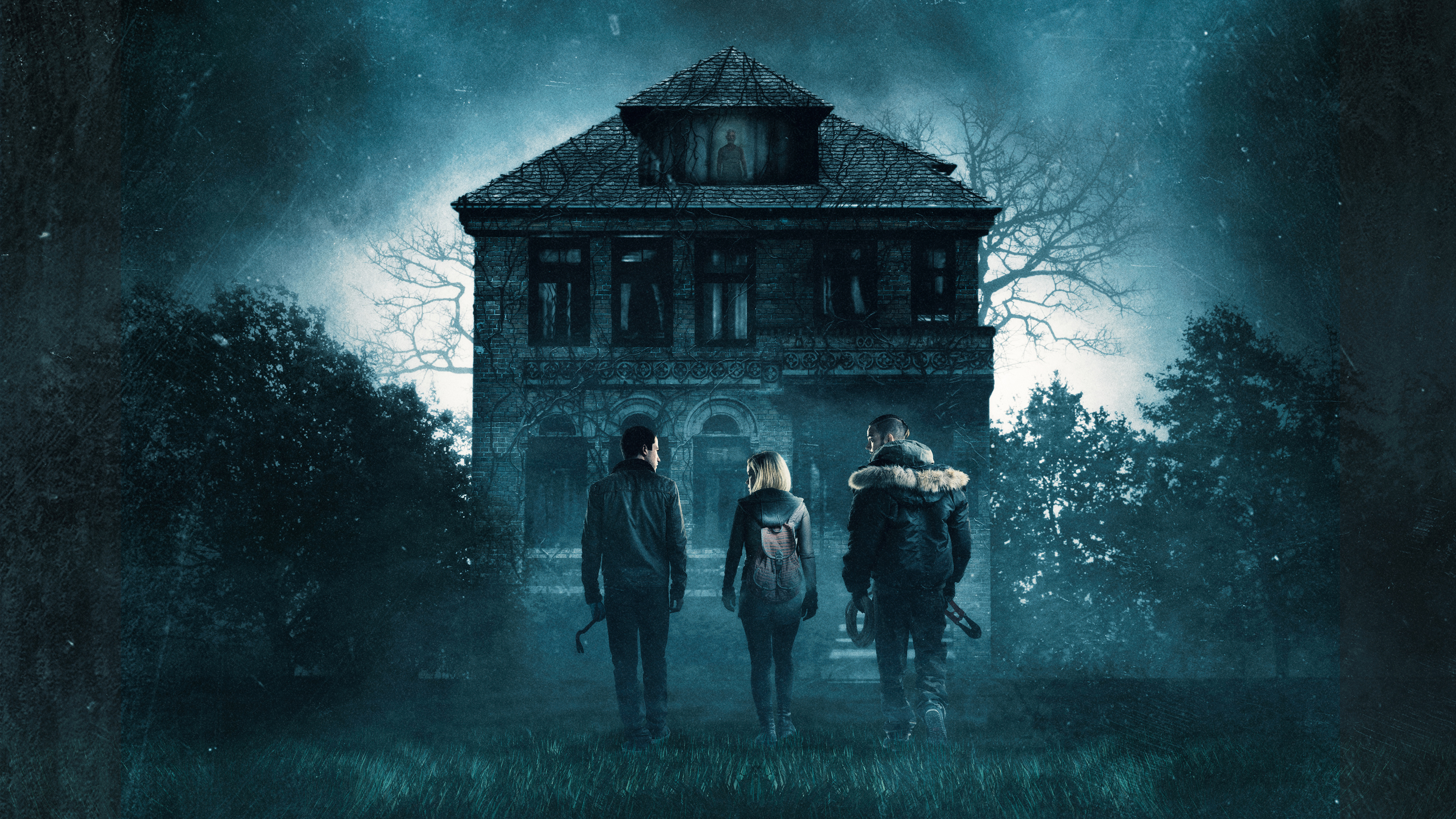 dont breathe 2016 1536399356 - Dont Breathe 2016 - movies wallpapers, dont breathe wallpapers, 2016 movies wallpapers