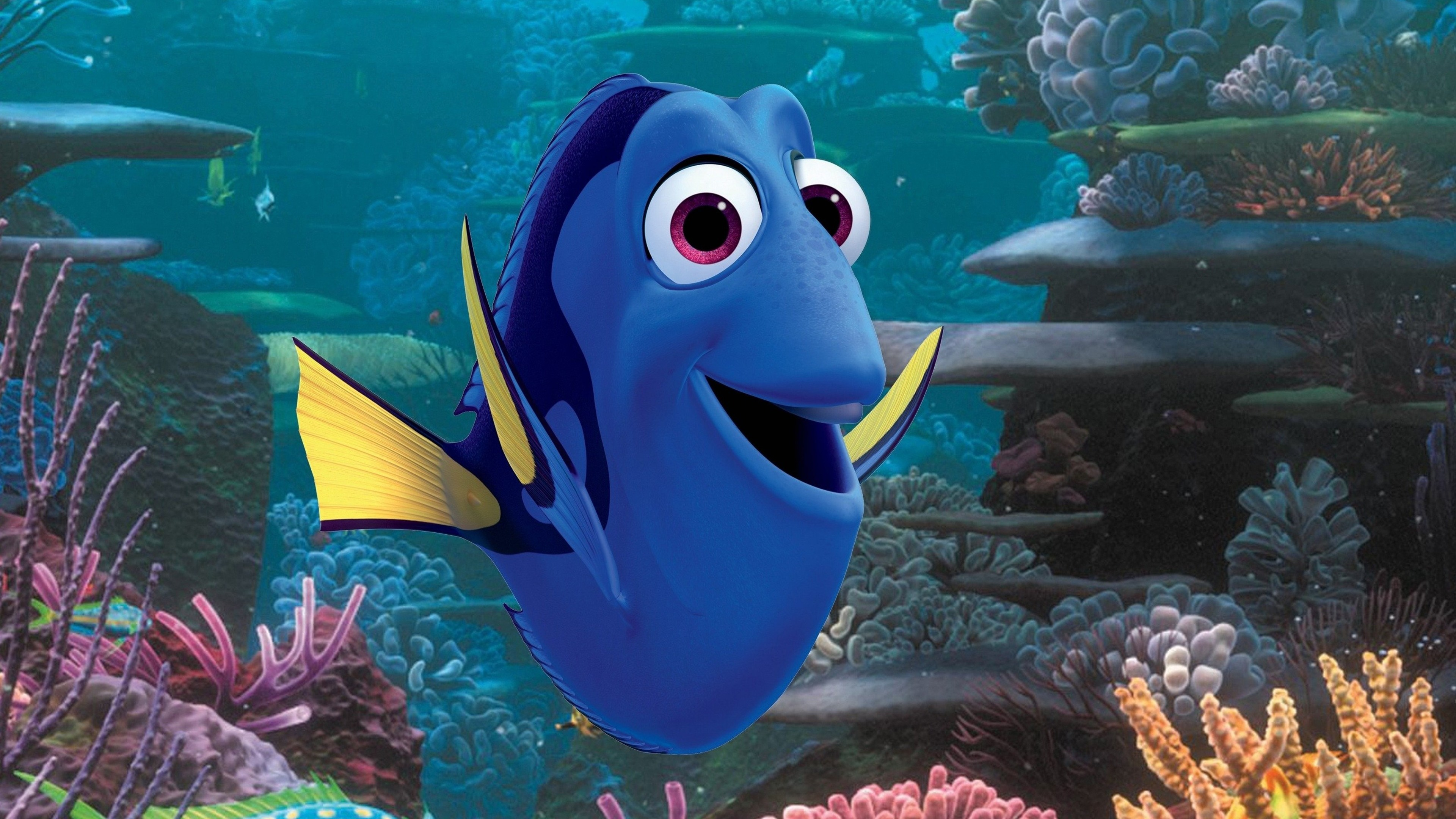 dory 1536363372 - Dory - movies wallpapers, finding dory wallpapers, animated movies wallpapers, 2016 movies wallpapers