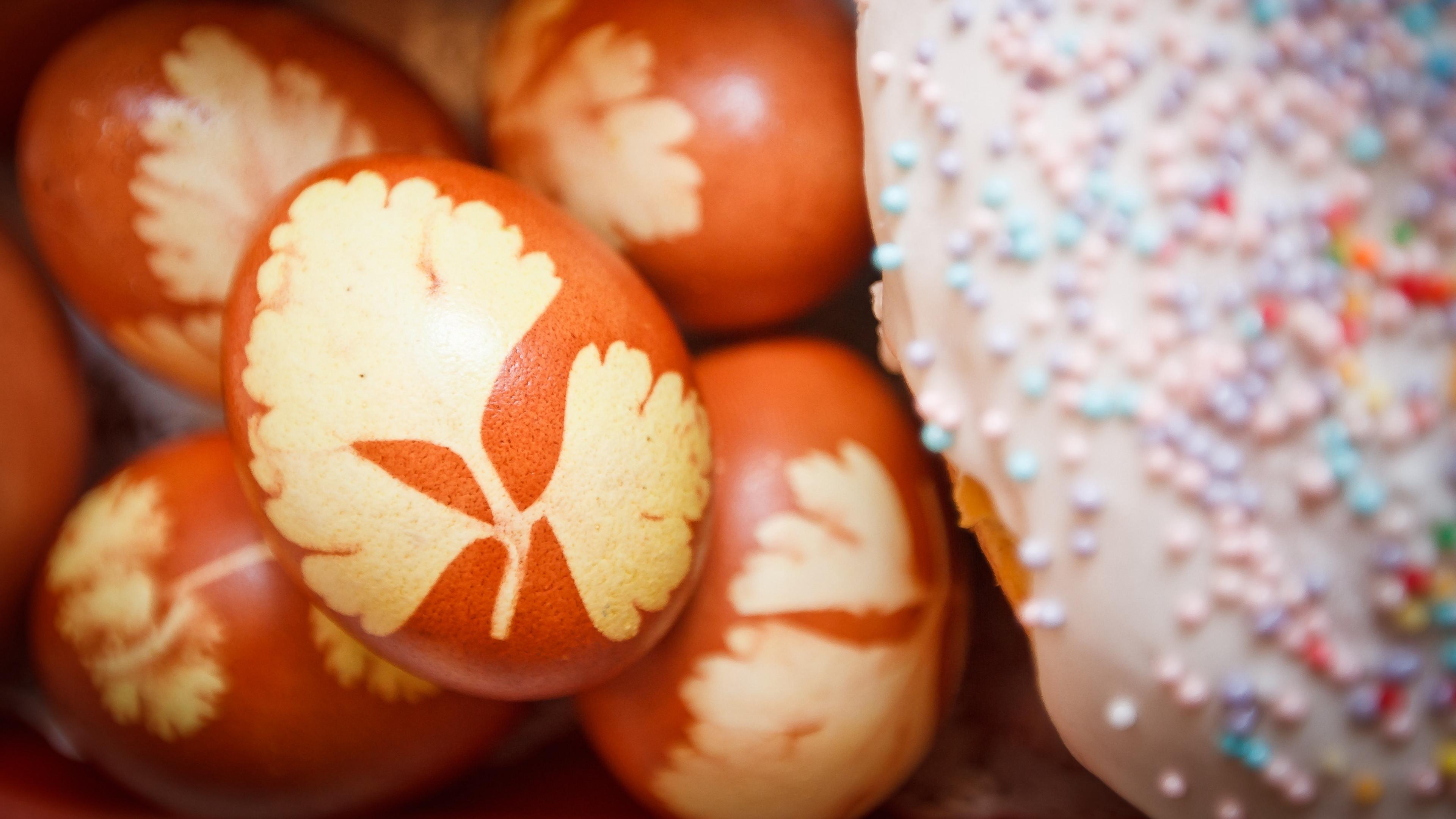 easter easter cake sprinkling decorating 4k 1538344967 - easter, easter cake, sprinkling, decorating 4k - sprinkling, easter cake, Easter