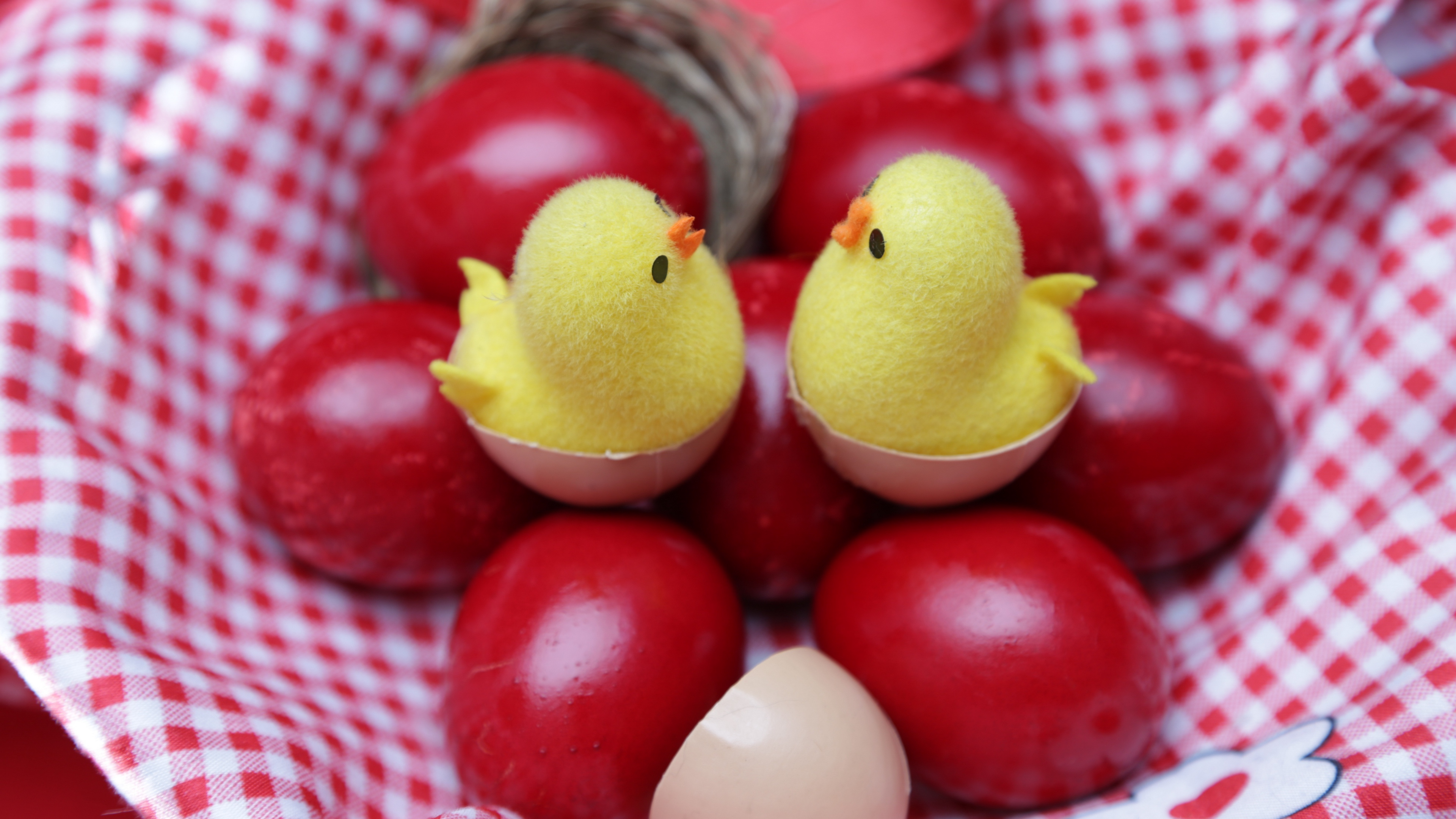 easter easter eggs cloth chickens 4k 1538344478 - easter, easter eggs, cloth, chickens 4k - easter eggs, Easter, cloth