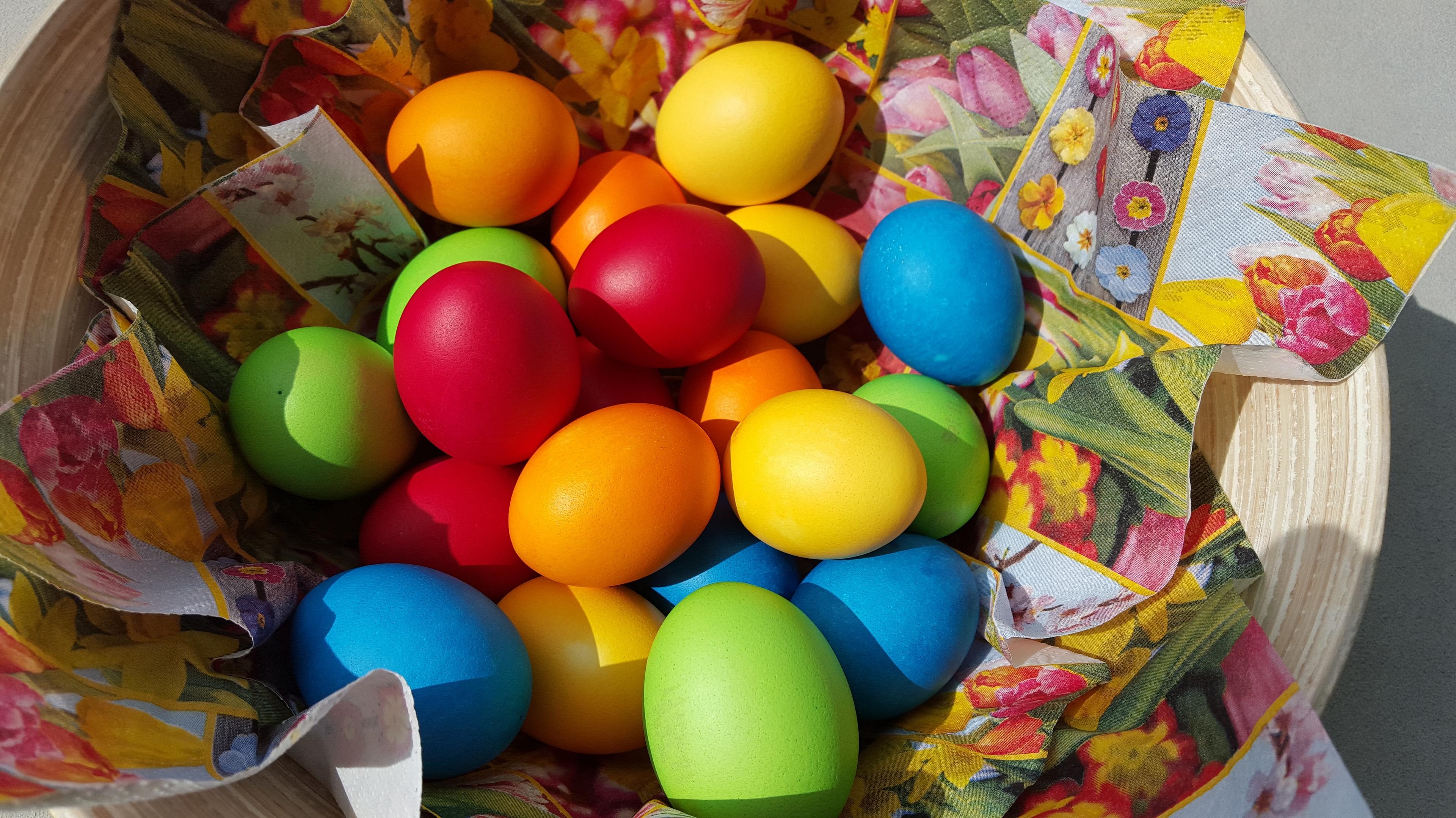 easter eggs easter plate 4k 1538344739 - easter eggs, easter, plate 4k - plate, easter eggs, Easter