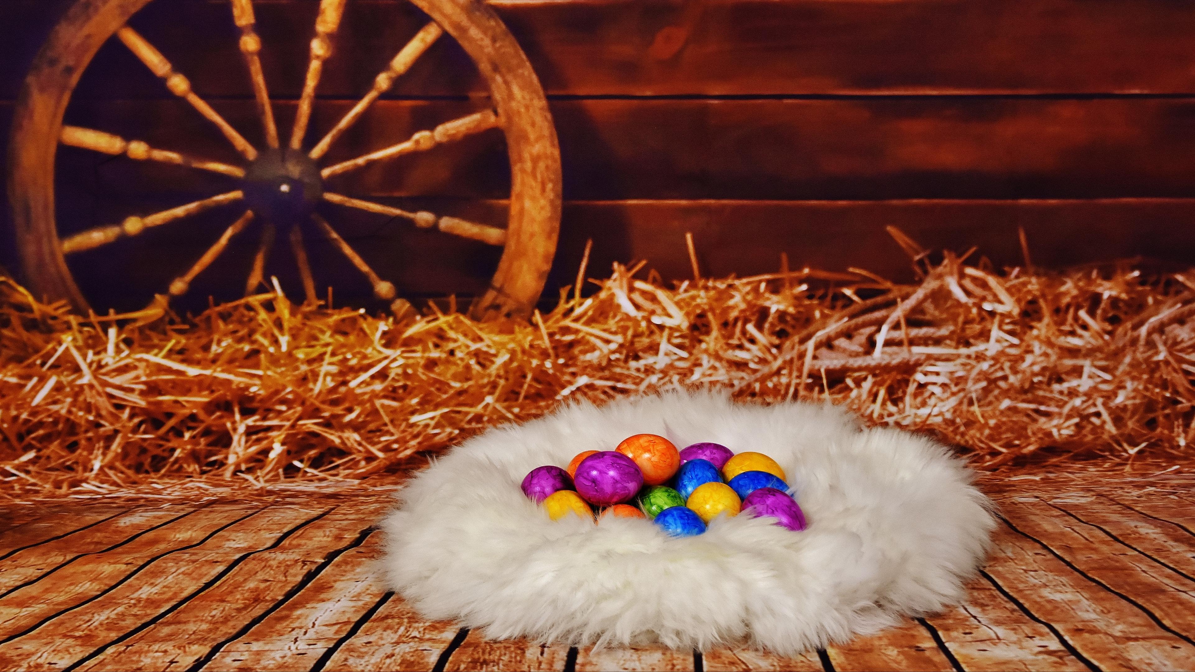 easter eggs nest hay 4k 1538345183 - easter, eggs, nest, hay 4k - Nest, Eggs, Easter