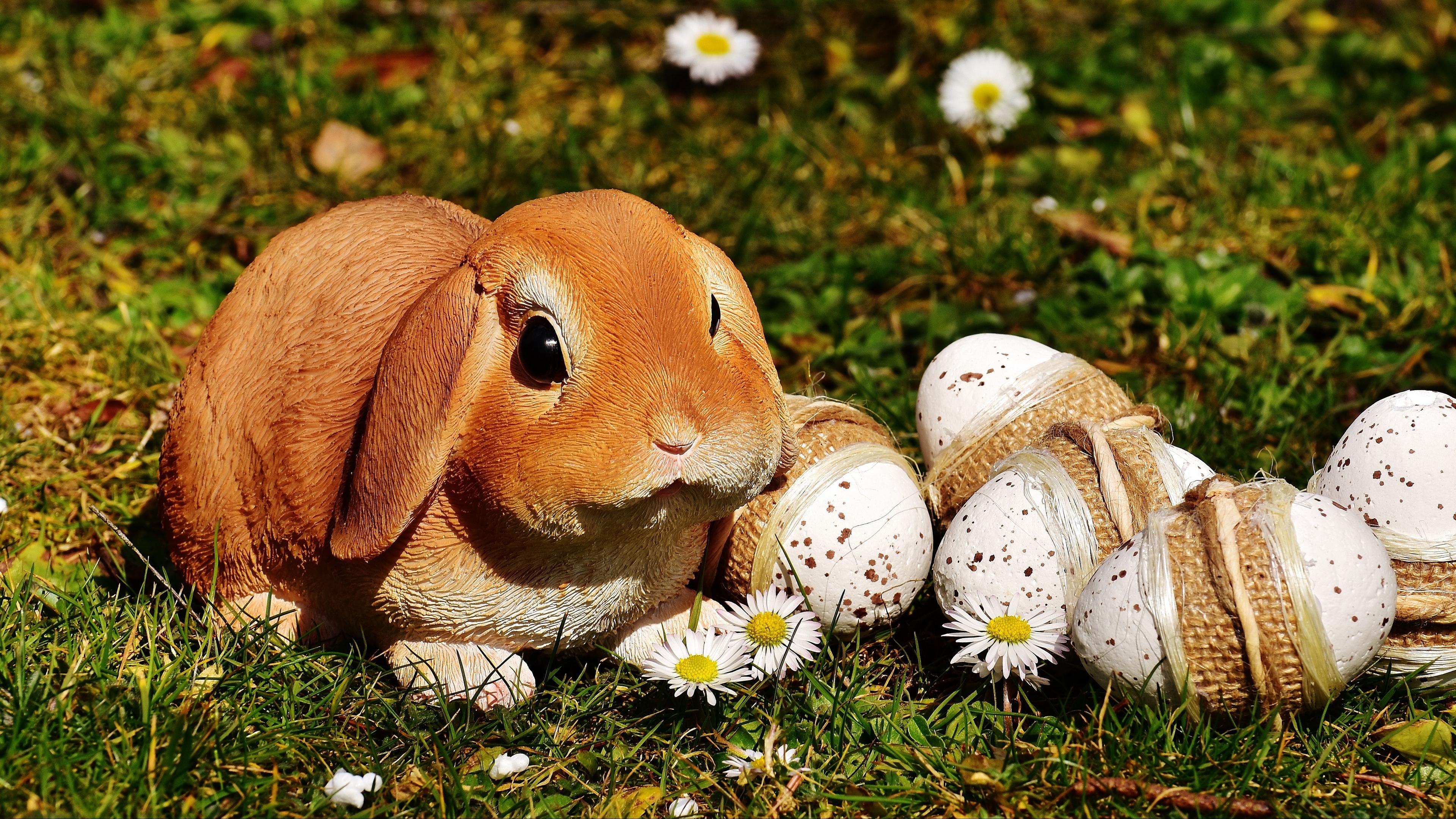 easter rabbit eggs 4k 1538344843 - easter, rabbit, eggs 4k - Rabbit, Eggs, Easter