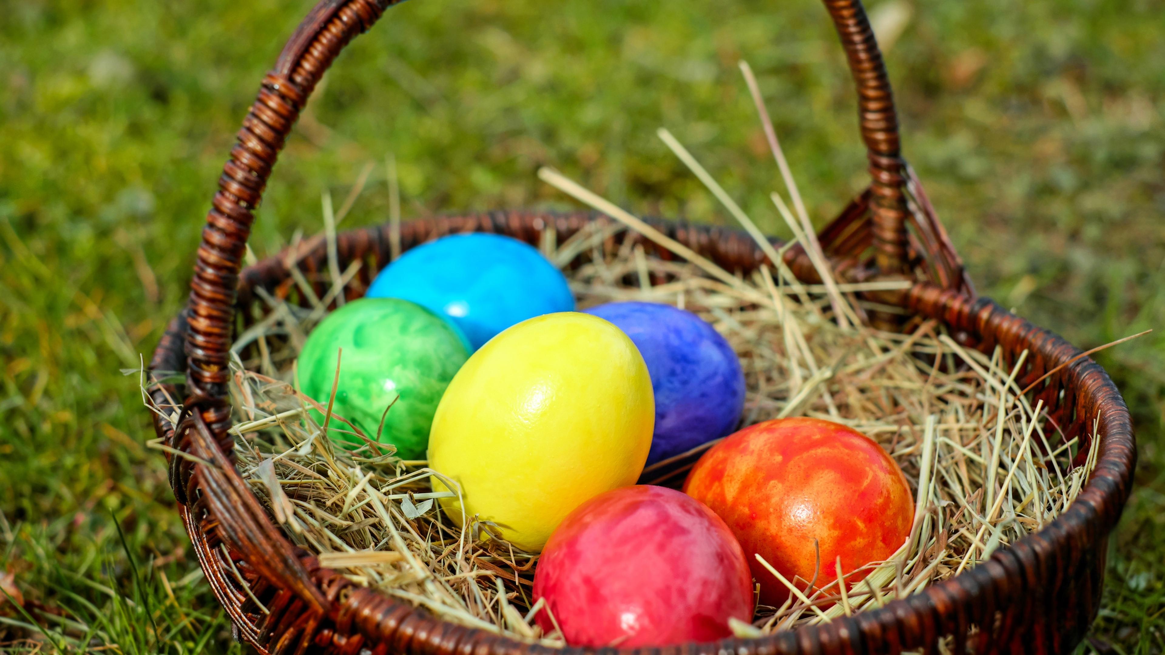 eggs easter basket hay 4k 1538344670 - eggs, easter, basket, hay 4k - Eggs, Easter, Basket