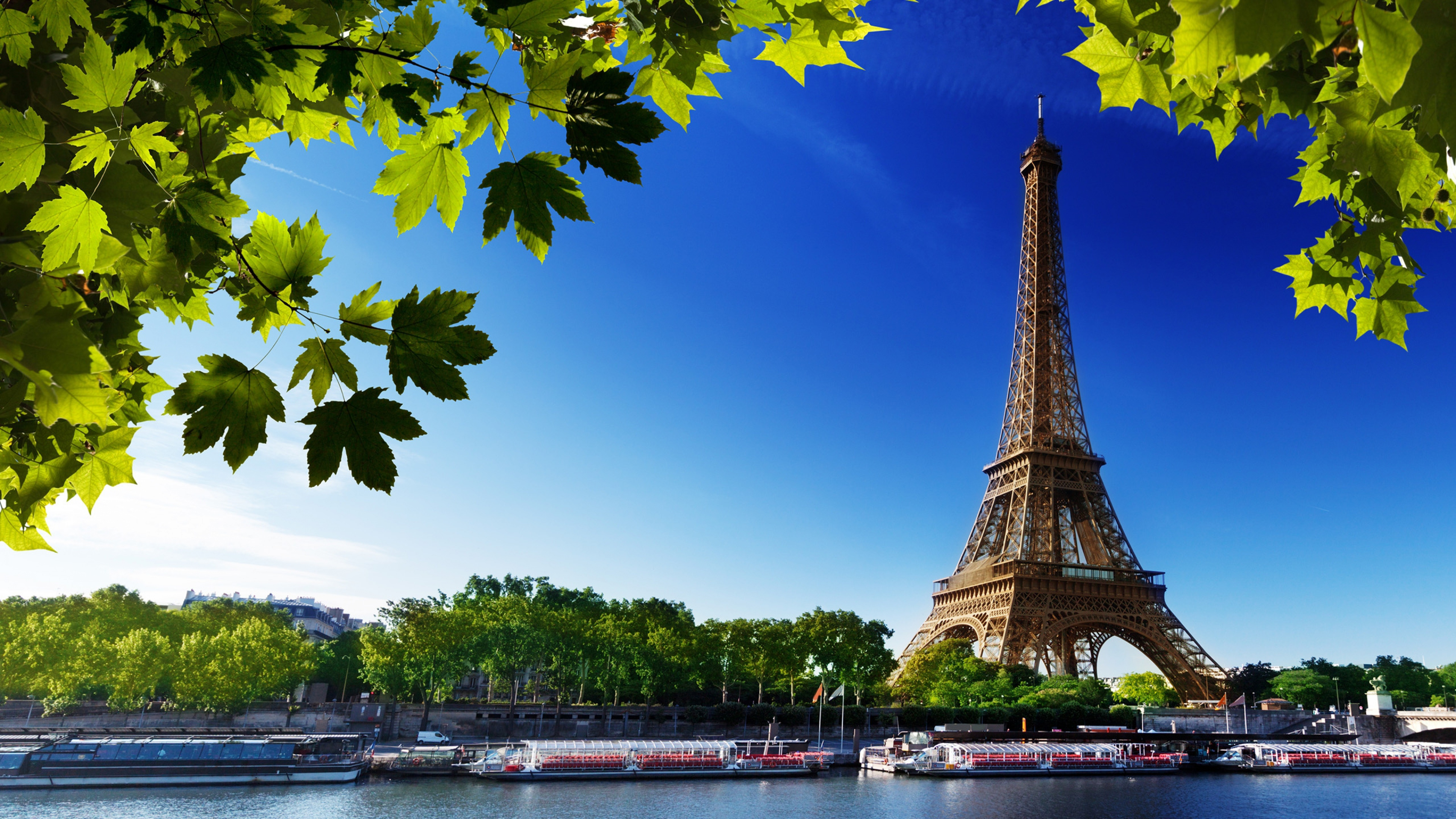 Wallpaper 4k Eiffel Tower Paris 4k 4k Wallpapers Eiffel Tower Wallpapers France Wallpapers Paris Wallpapers World Wallpapers