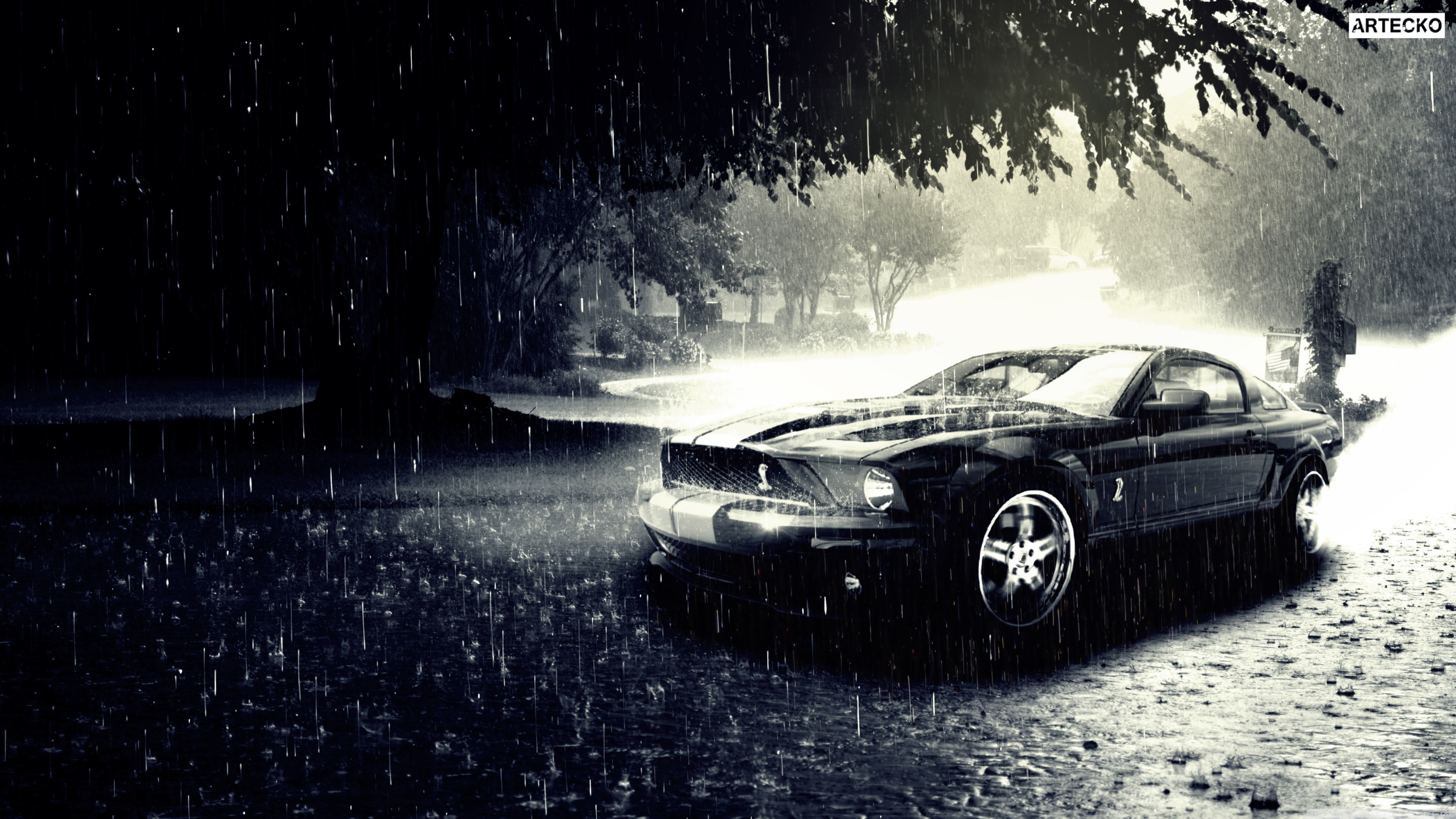 ford mustand 1535845332 - Ford Mustand - mustang wallpapers, ford wallpapers, cars wallpapers, black wallpapers
