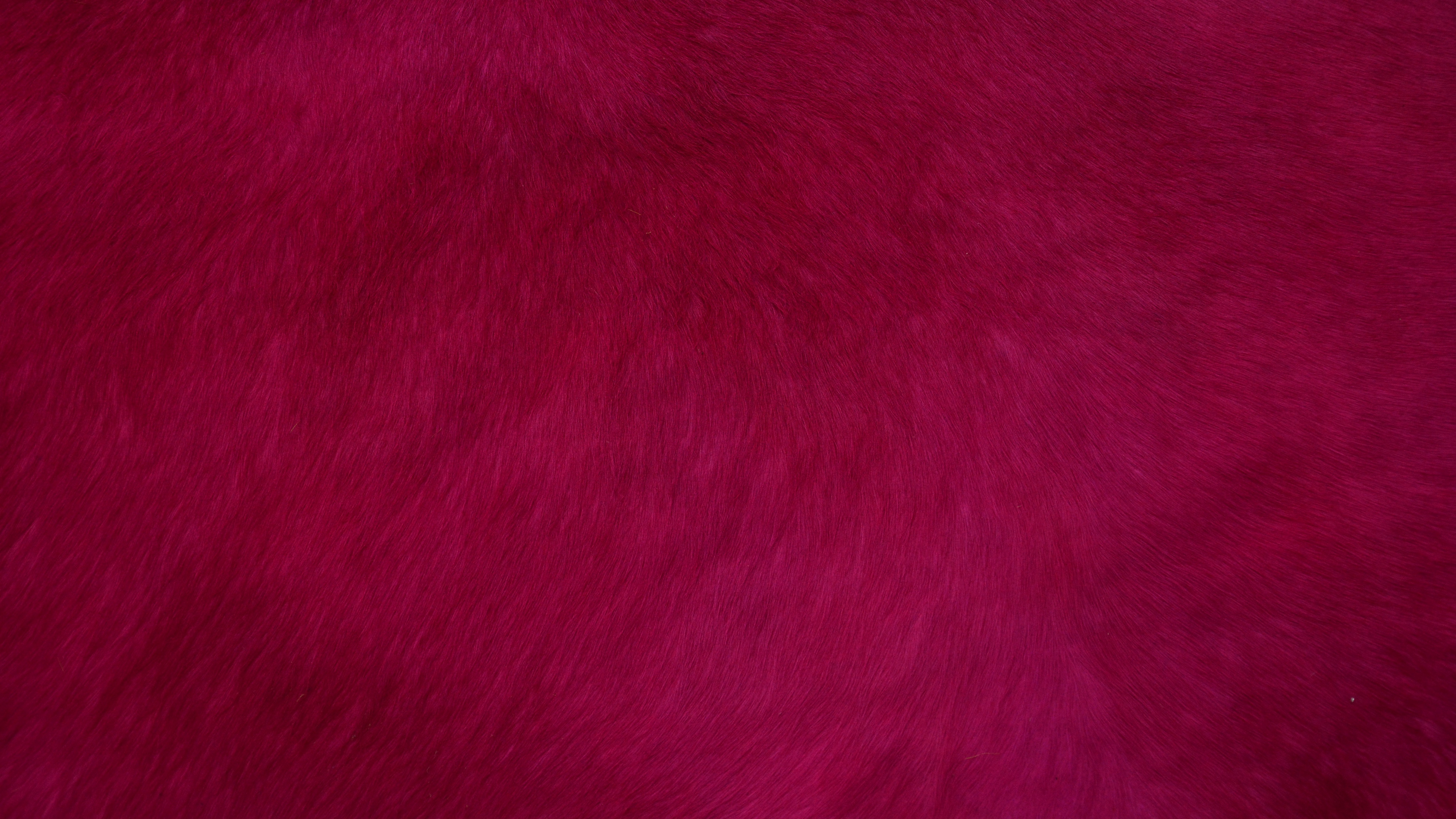 fur texture red surface 4k 1536097809 - fur, texture, red, surface 4k - Texture, red, fur