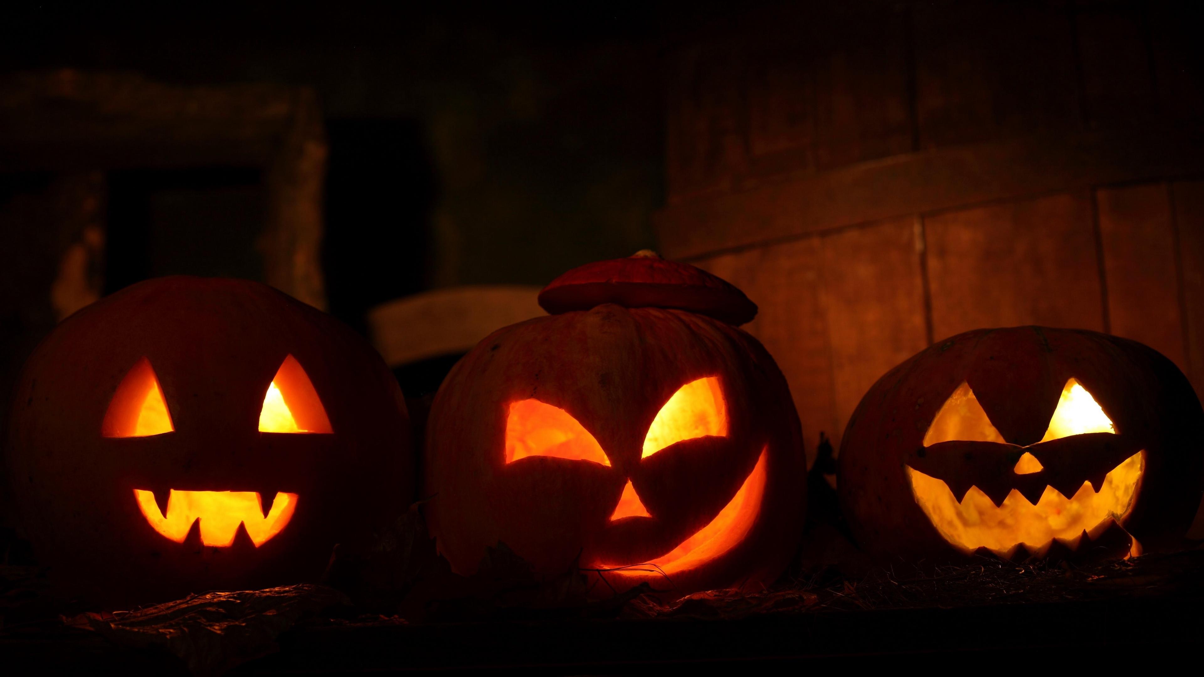 halloween holiday night pumpkin three 4k 1538344621 - halloween, holiday, night, pumpkin, three 4k - Night, Holiday, halloween
