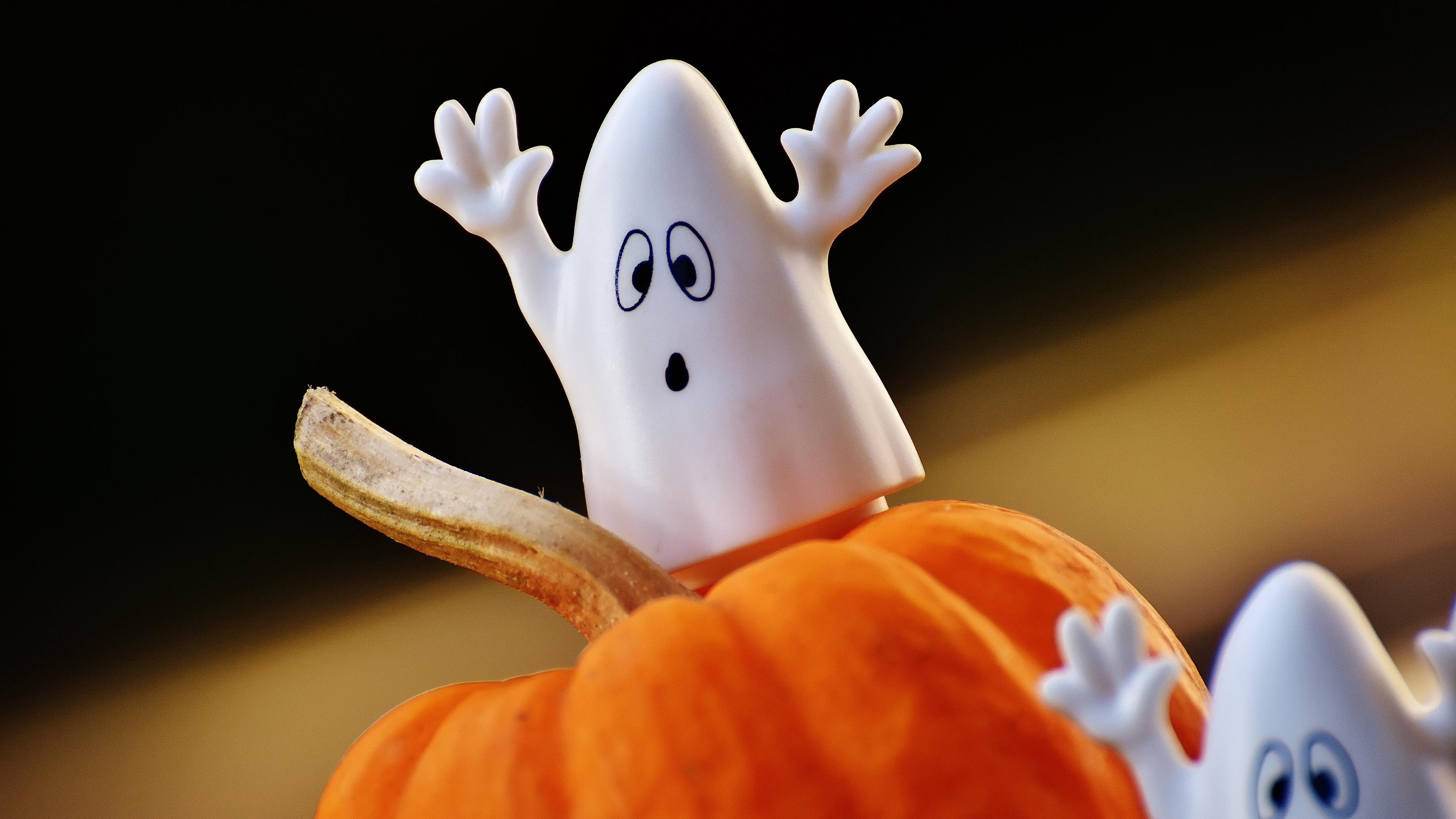 halloween pumpkins ghosts toys 4k 1538344964 - halloween, pumpkins, ghosts, toys 4k - pumpkins, halloween, Ghosts