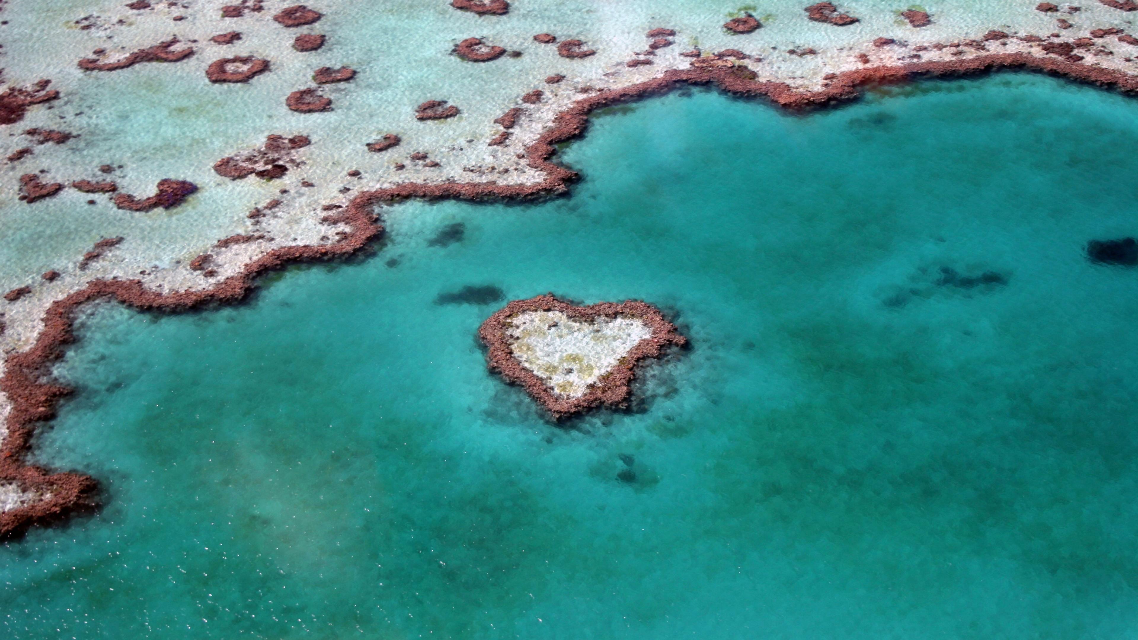 heart reef australia 1538069032 - Heart Reef Australia - world wallpapers, nature wallpapers, love wallpapers, heart reef wallpapers, creative wallpapers, artist wallpapers, art wallpapers