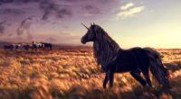 horse unicorn golf art grass wind 4k 1536098879 200x110 - horse, unicorn, golf, art, grass, wind 4k - unicorn, horse, golf