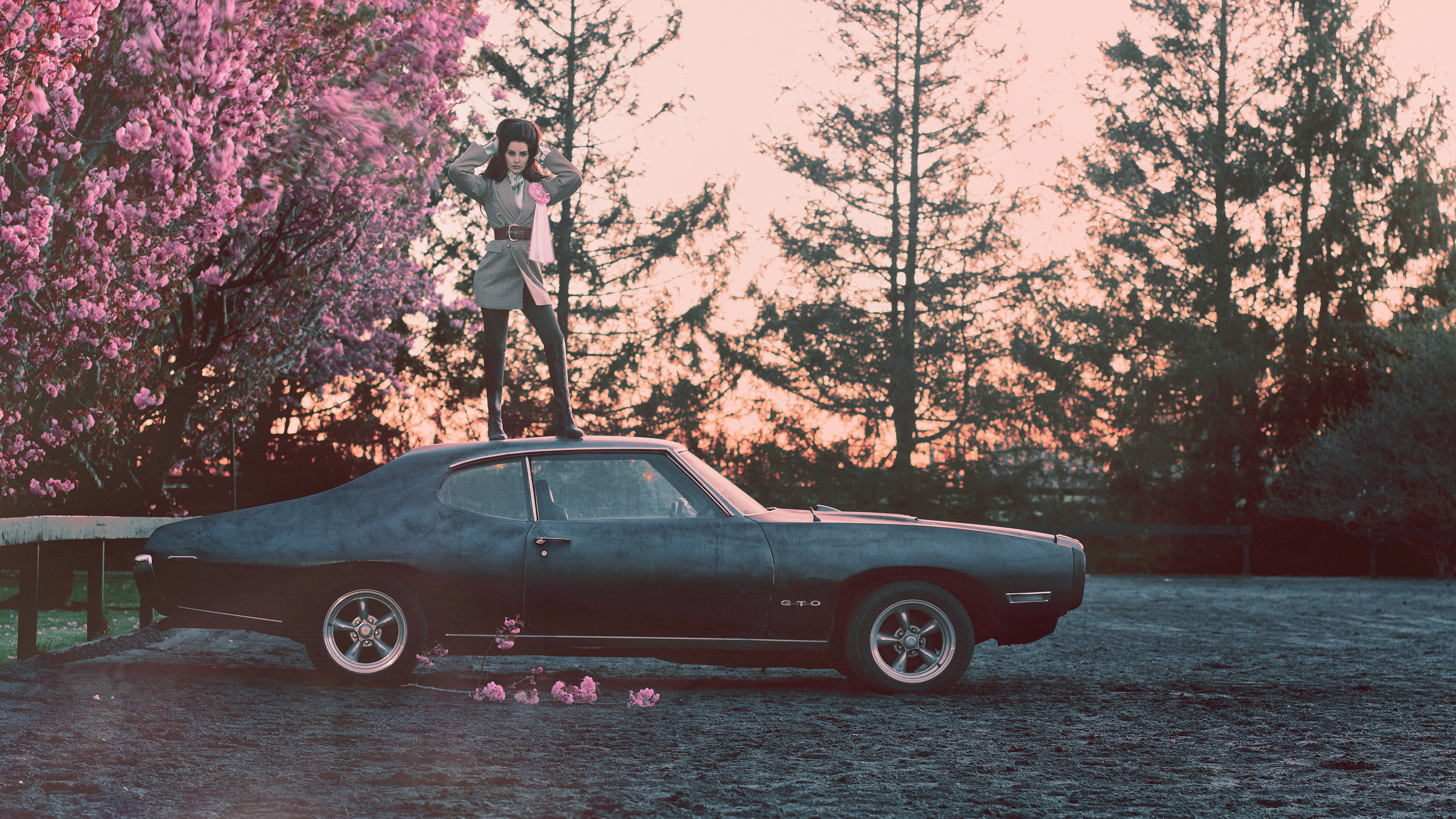lana del rey 2019 1536950208 - Lana Del Rey 2019 - singer wallpapers, music wallpapers, lana del rey wallpapers, hd-wallpapers, girls wallpapers, celebrities wallpapers, 5k wallpapers, 4k-wallpapers