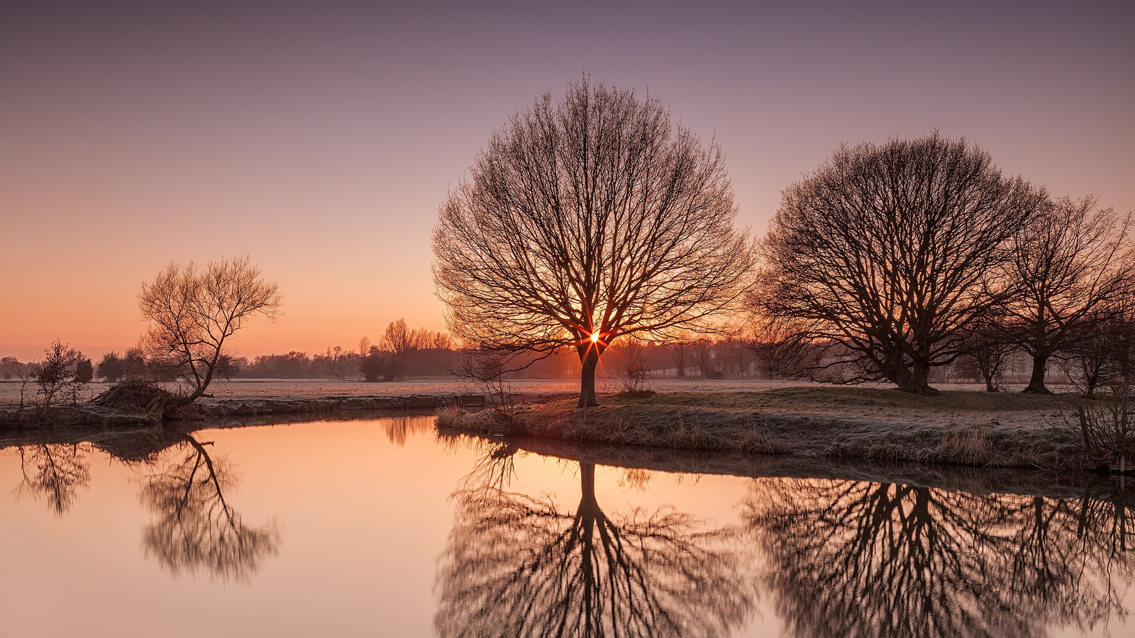light dawn 1535924031 - Light Dawn - trees wallpapers, river wallpapers, nature wallpapers, light wallpapers