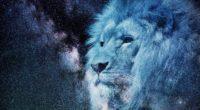 lion muzzle starry sky stars photoshop king of beasts predator 4k 1536098490 200x110 - lion, muzzle, starry sky, stars, photoshop, king of beasts, predator 4k - starry sky, muzzle, Lion