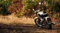 motorcycle autumn vehicle 4k 1536018902 200x110 - motorcycle, autumn, vehicle 4k - Vehicle, Motorcycle, Autumn