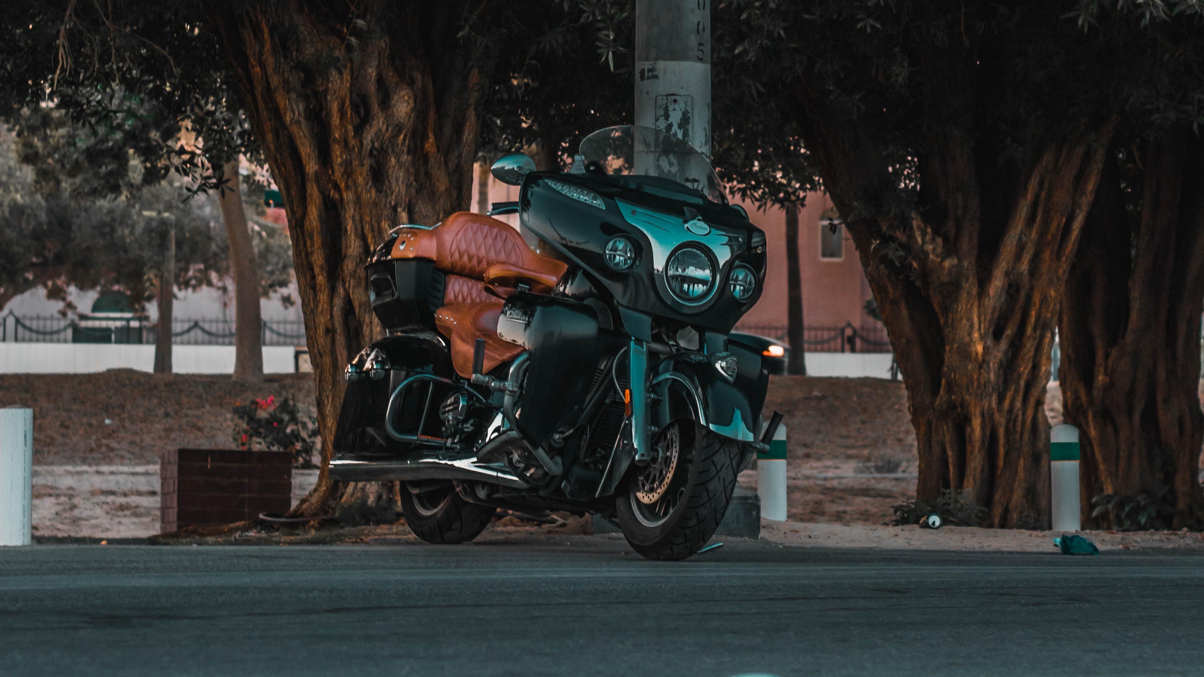 motorcycle bike street road trees 4k 1536018893 - motorcycle, bike, street, road, trees 4k - Street, Motorcycle, Bike