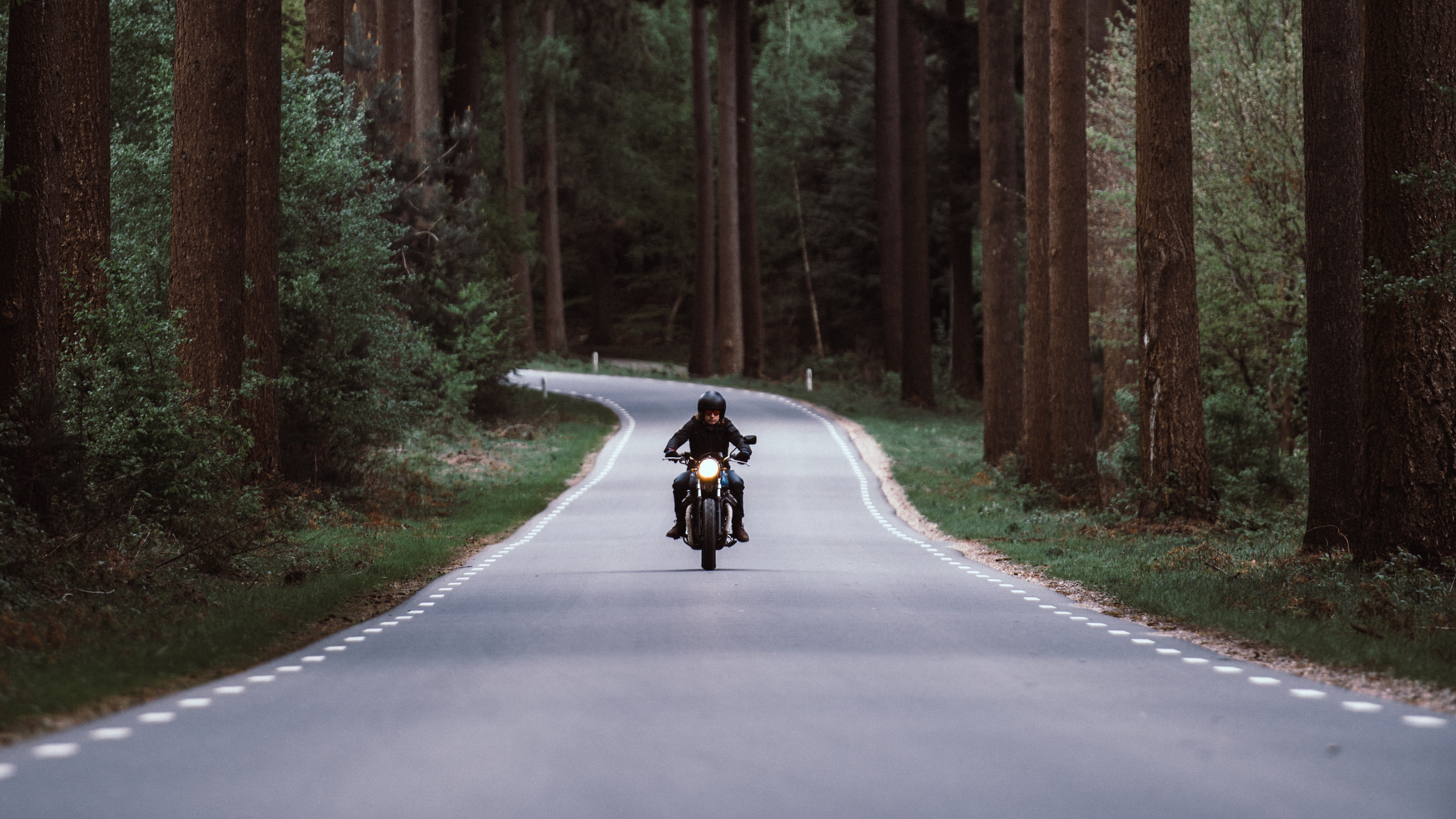 motorcyclist motorcycle road forest movement turn 4k 1536018429 - motorcyclist, motorcycle, road, forest, movement, turn 4k - Road, motorcyclist, Motorcycle