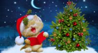 new year christmas cat card 4k 1538345392 200x110 - new year, christmas, cat, card 4k - new year, Christmas, Cat