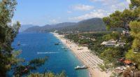 ocean beach trees houses 4k 1538065690 200x110 - ocean, beach, trees, houses 4k - Trees, Ocean, Beach