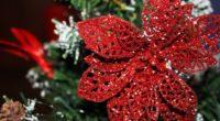 ornament christmas ornaments poinsettia decoration 4k 1538344550 200x110 - ornament, christmas ornaments, poinsettia, decoration 4k - Poinsettia, ornament, christmas ornaments
