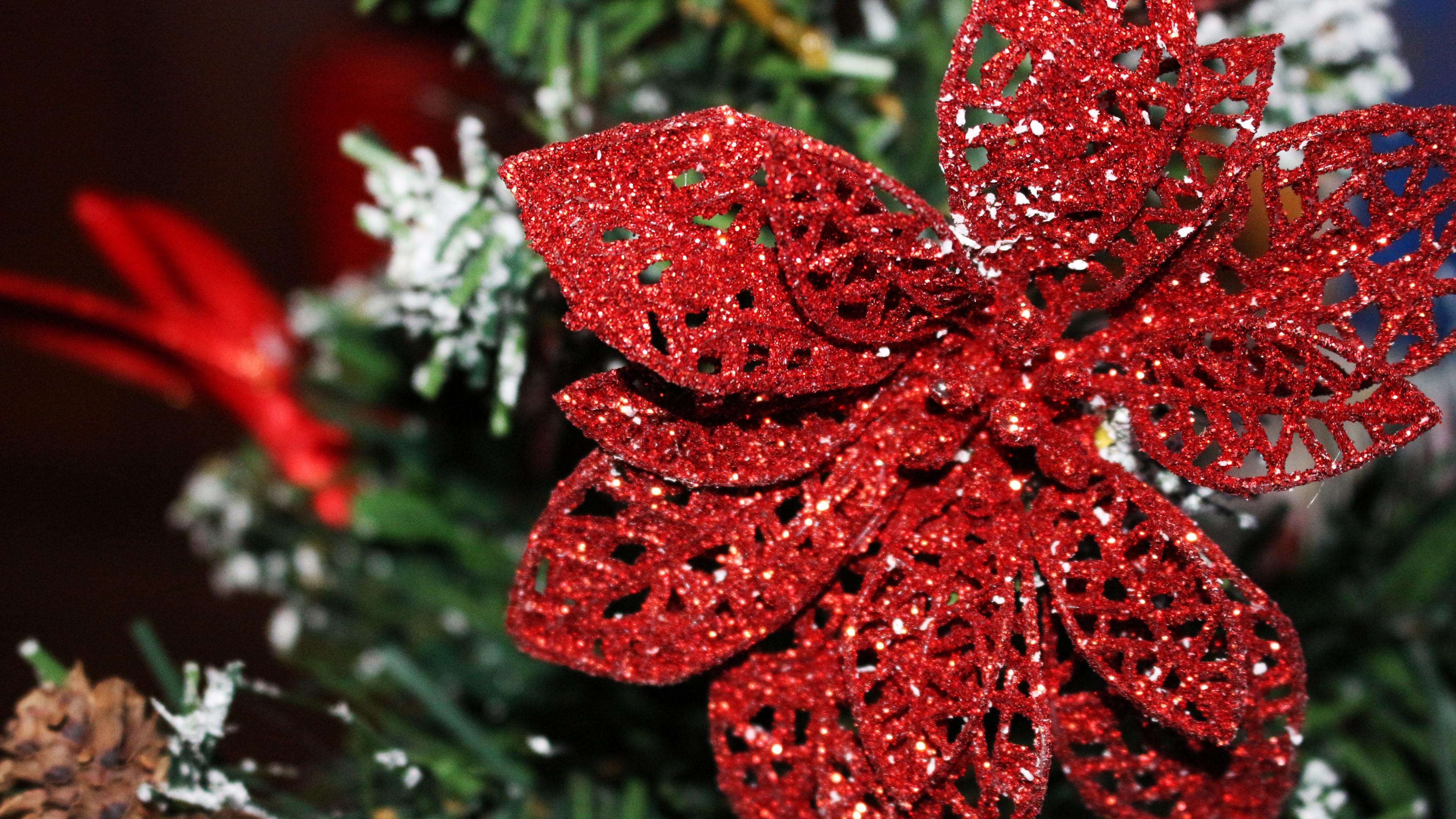ornament christmas ornaments poinsettia decoration 4k 1538344550 - ornament, christmas ornaments, poinsettia, decoration 4k - Poinsettia, ornament, christmas ornaments