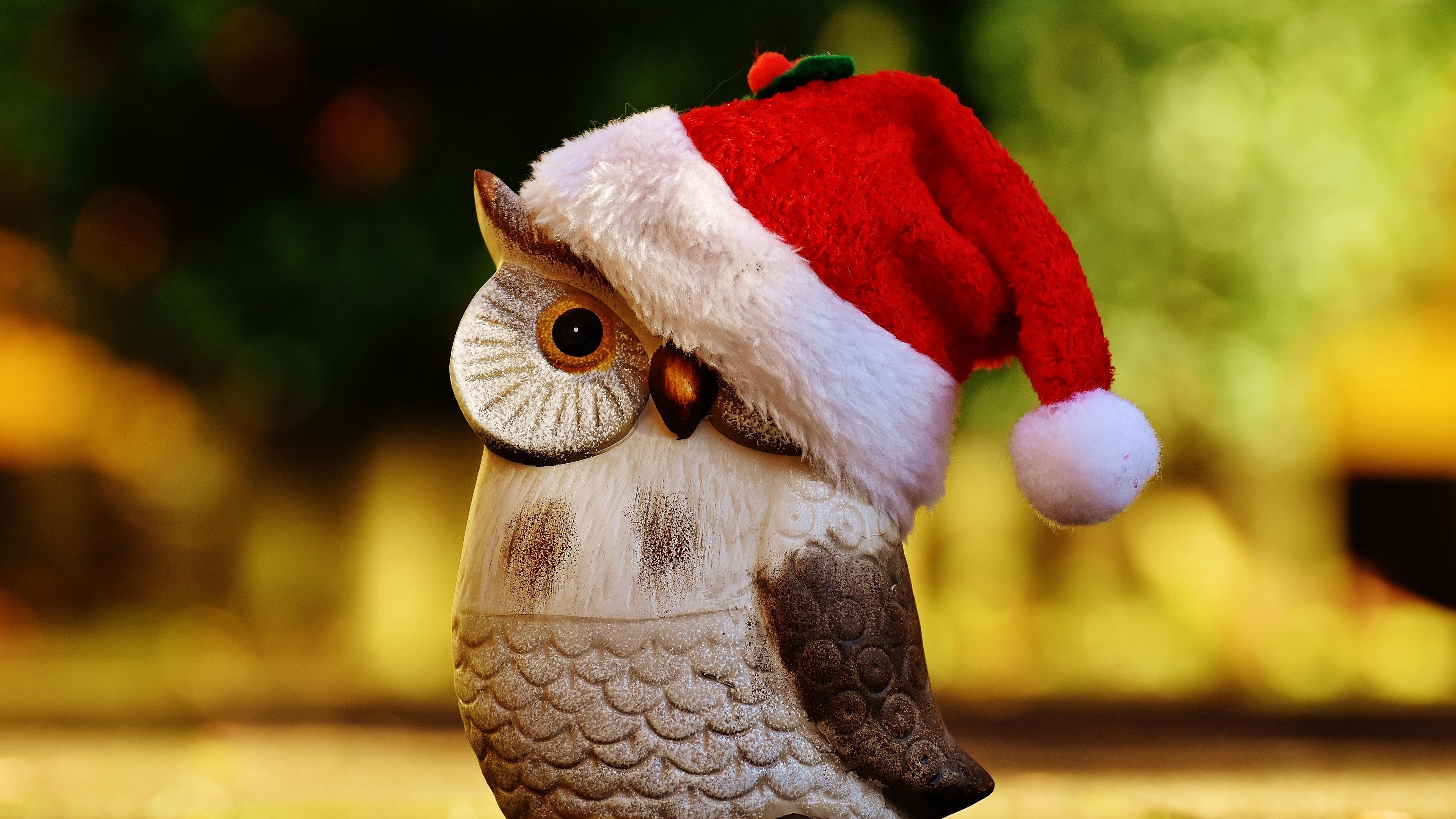 owl hat santa claus figurine 4k 1538344576 - owl, hat, santa claus, figurine 4k - santa claus, Owl, hat