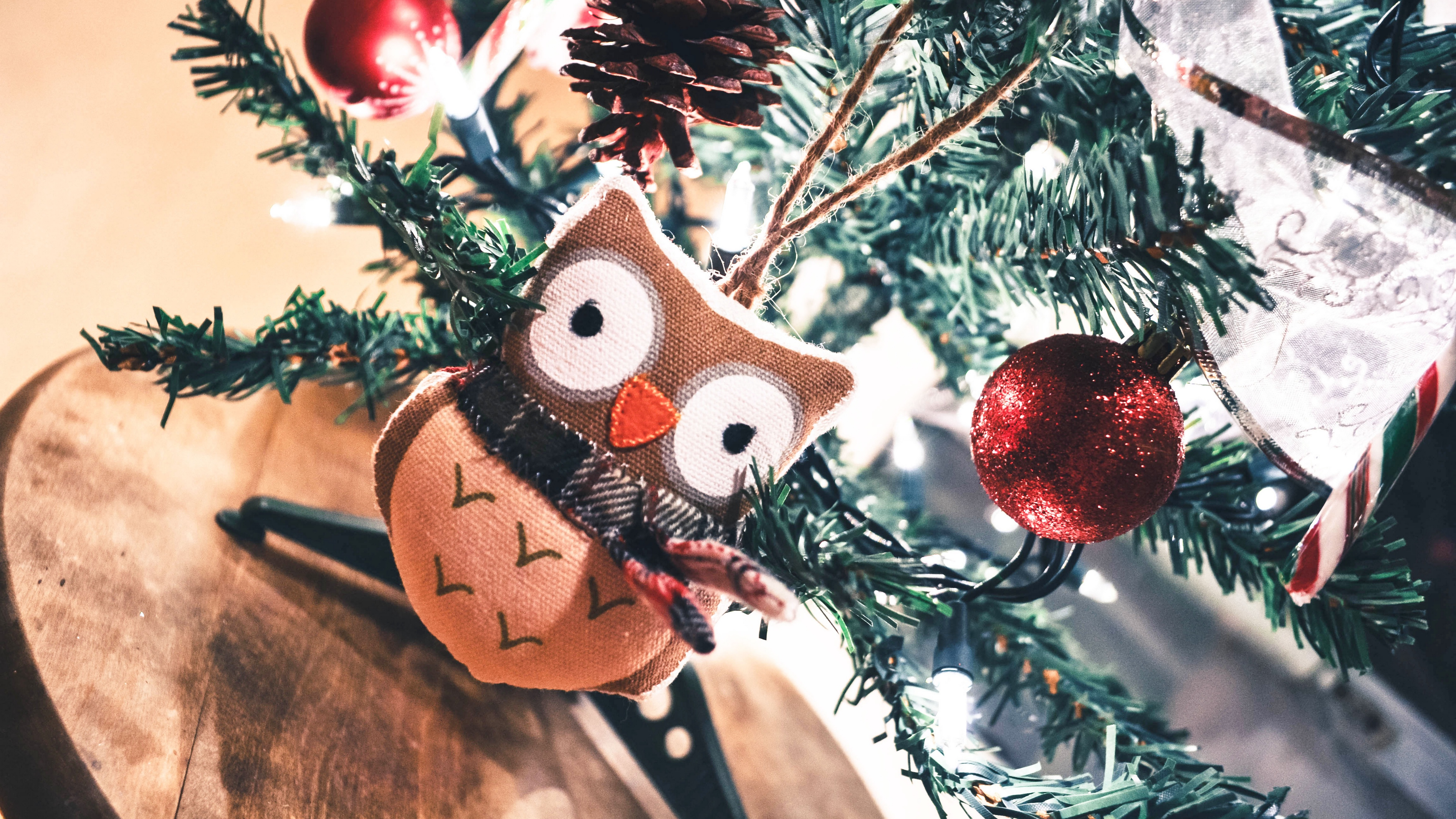 owl toy christmas new year 4k 1538344481 - owl, toy, christmas, new year 4k - toy, Owl, Christmas