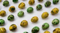 quail eggs easter painted 4k 1538344562 200x110 - quail eggs, easter, painted 4k - quail eggs, painted, Easter