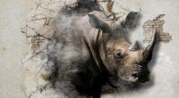 rhinoceros cracks wall art 4k 1536098445 200x110 - rhinoceros, cracks, wall, art 4k - WALL, rhinoceros, cracks