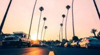 road palm trees asphalt cars marking redondo beach california united states 4k 1538067062 200x110 - road, palm trees, asphalt, cars, marking, redondo beach, california, united states 4k - Road, palm trees, asphalt